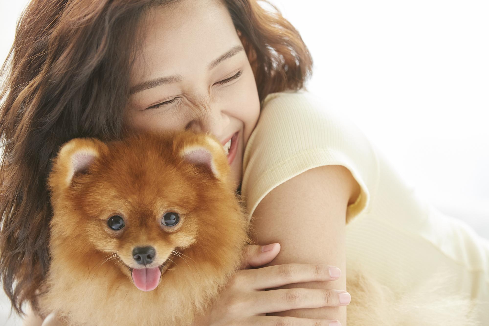犬のノミ予防対策!ノミが発生する原因は?